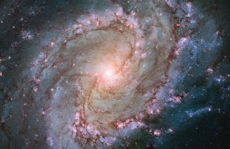 M83 (Southern Pinwheel Galaxy)